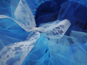 Blue Tutu Close Up